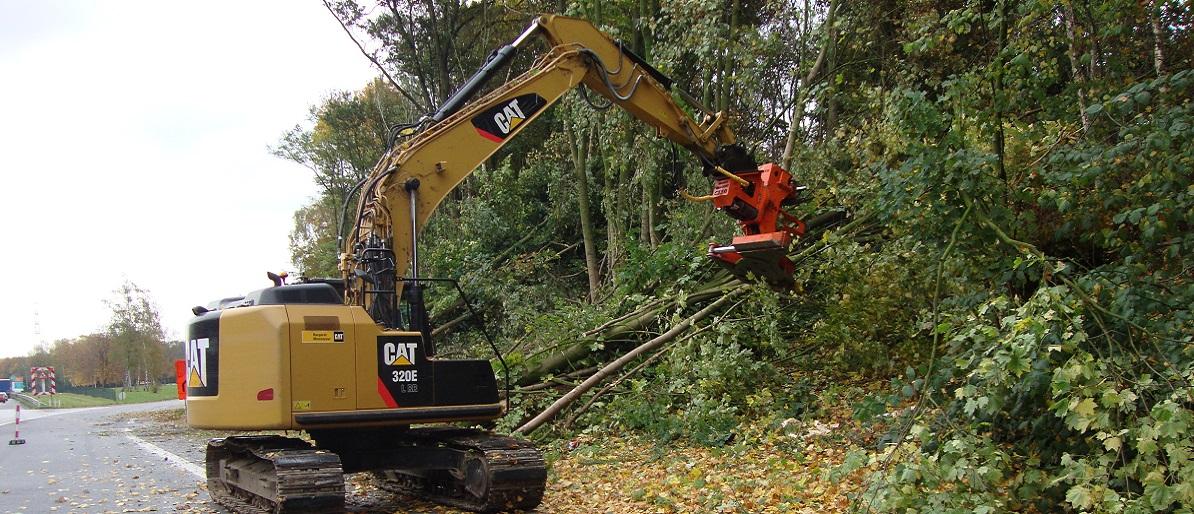 Abattage d'arbres dangereux sur l'autoroute - Rolot et Fils SA